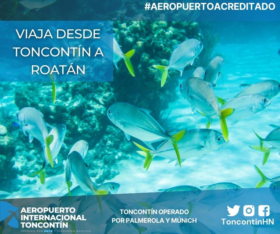 Aeropuerto-Tegucigalpa-Honduras-Toncontín-Conexión-Roatán